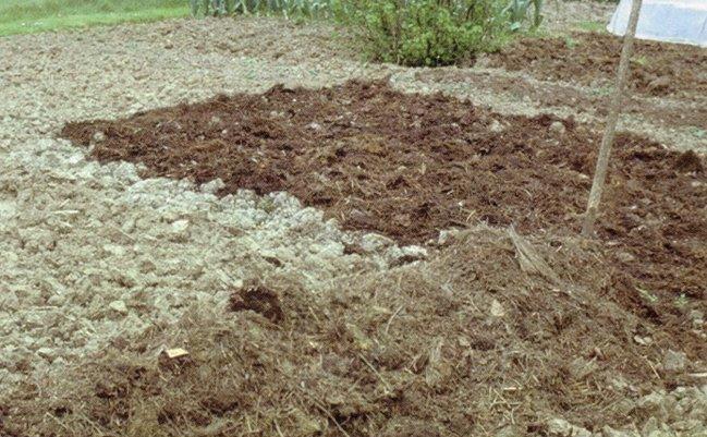 Faire son compost utilisation du compost - Faire du compost dans son jardin ...